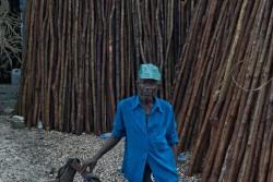 Haitian Laborer by Matt Waeckerle