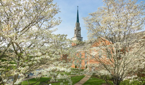 seeger chapel and blooms