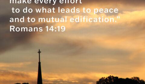 MU - Romans 14-19